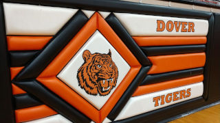 Dover Tigers Logo